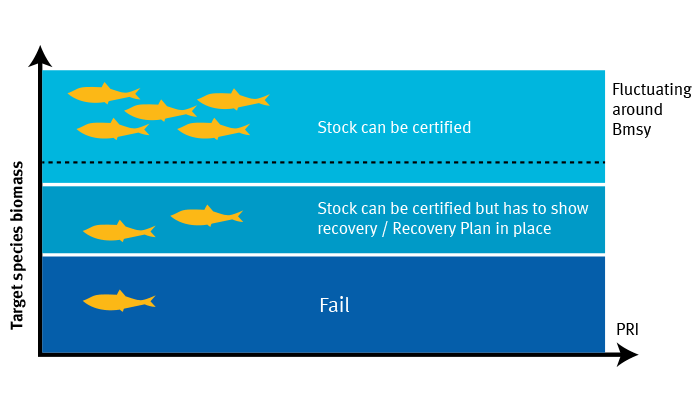 Infographic sustainable fishing