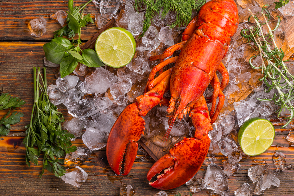Difference Between Maine Lobster & Rock Lobster? | Oceanfoods